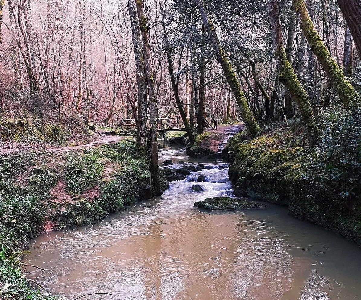 Puente de madera sobre río La Ñora