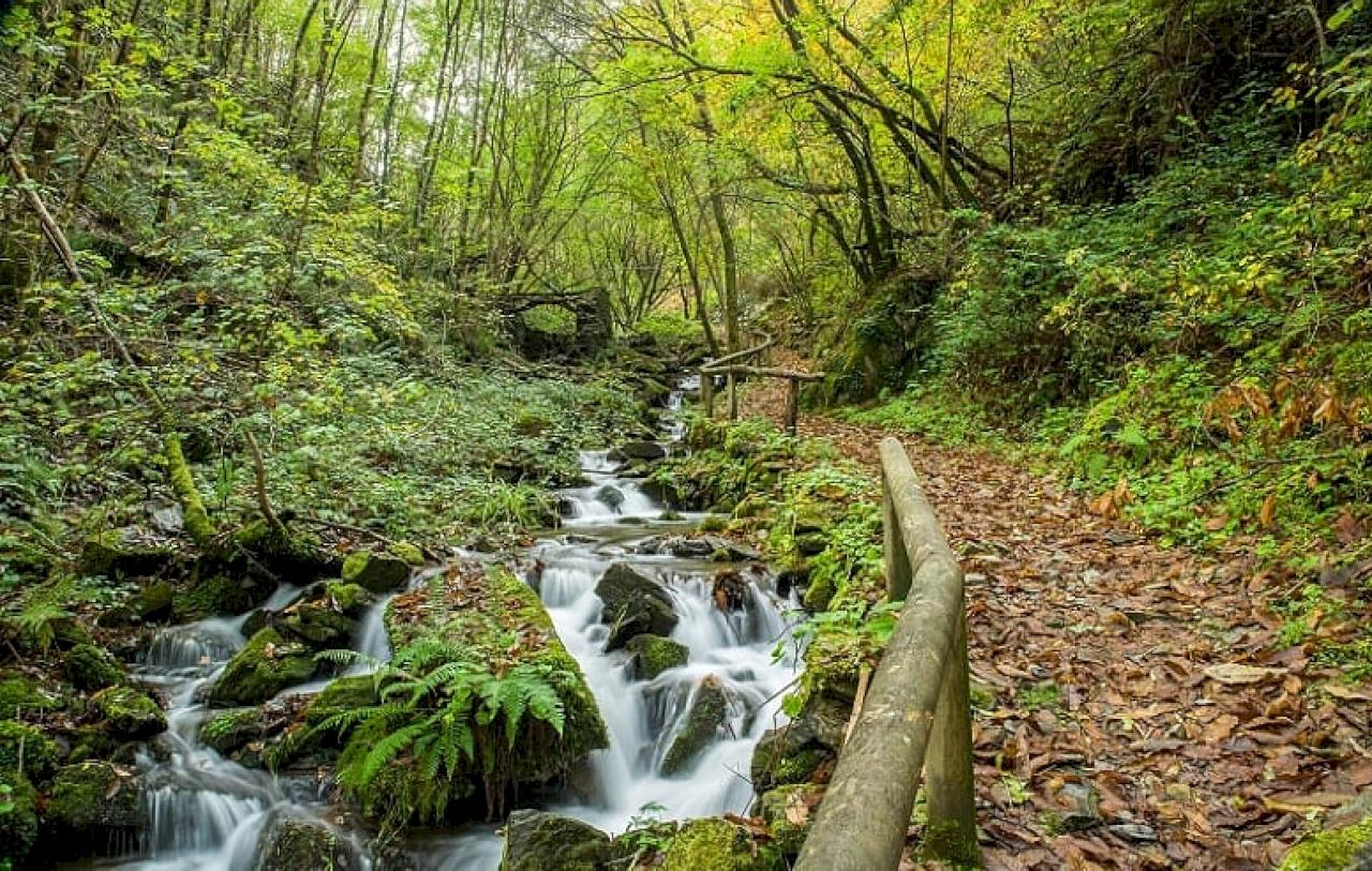 Asturias Occidental